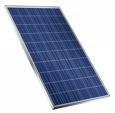 Zonnepaneel Trina Solar TSM-pd05 280 Wp